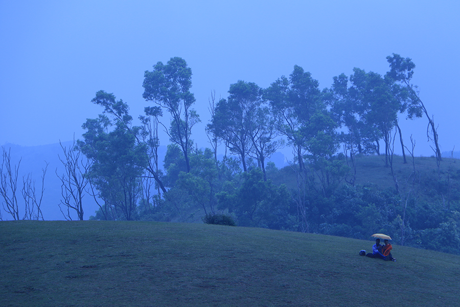 exploring-kerala-vagamon-meadows-mist