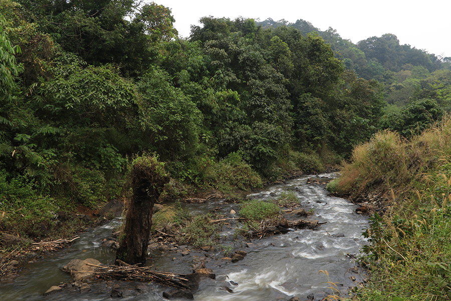 vagamon-stream